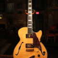 D'Angelico EX-SS