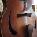 CustomArchtop03